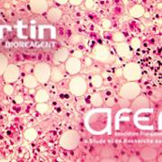 Meet Bertin Bioreagent at the 36th AFERO annual scientific days