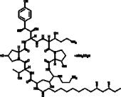 Caspofungin (acetate)