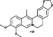 13-<wbr/>Methyl<wbr/>berberine (chloride)
