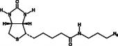 Biotin-azide