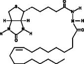Oleic Acid-<wbr/>biotin
