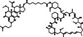 Wortmannin-<wbr/>Rapamycin Conjugate