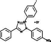 Iodonitro<wbr/>tetrazolium (chloride)