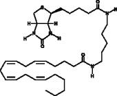 Arachidonic Acid-<wbr/>biotin