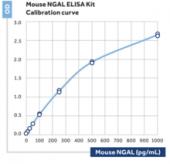 NGAL (mouse) ELISA Kit