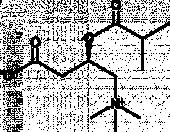 Isobutyryl-L-<wbr/>carnitine