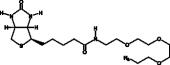 Biotin-PEG<sub>3</sub>-azide