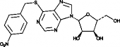 S-<wbr/>(4-<wbr/>Nitrobenzyl)-<wbr/>6-<wbr/>thioinosine
