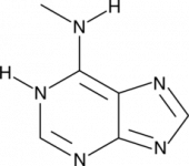 N<sup>6</sup>-Methyladenine