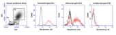 Neutrophil/<wbr/>Monocyte Respiratory Burst Assay Kit
