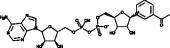 3-Acetyl<wbr/>pyridine NAD