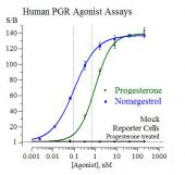 Human PGR Reporter Assay System, 3 x 32 assays in 96-well format