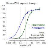 Human PGR Reporter Assay System, 1 x 384-well format assay