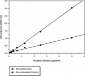 NF-<wbr/>κB (p65) Transcription Factor Assay Kit
