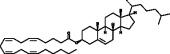 Cholesteryl Arachidonate