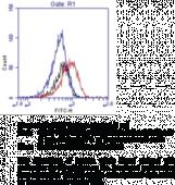 IgG<sub>1</sub> Isotype Control FITC Monoclonal Antibody (Clone MOPC-<wbr/>21)