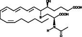 N-<wbr/>acetyl Leukotriene E<sub>4</sub>