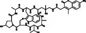 Phalloidin-AMCA Conjugate