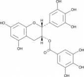 (?)-<wbr/>Epigallocatechin Gallate