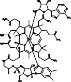Coenzyme B<sub>12</sub>