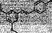 PDM 11