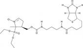 DEPMPO-<wbr/>biotin
