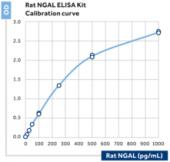 NGAL (rat) ELISA Kit