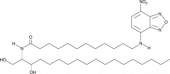 C12 NBD L-<em>threo</em> dihydro Ceramide (d18:0/12:0)