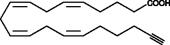 Arachidonic Acid Alkyne