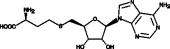S-<wbr/>Adenosylhomocysteine