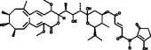 Bafilomycin B<sub>1</sub>