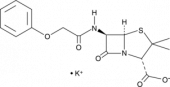Penicillin V (potassium salt)