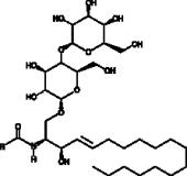 Lactosyl<wbr/>ceramides (bovine brain)