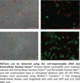 NETosis Imaging Assay Kit