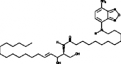 C12 NBD Ceramide (d18:1/12:0)