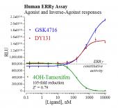 Human ERR? Reporter Assay System, 3 x 32 assays in 96-well format