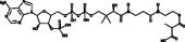 Methylmalonyl Coenzyme A
