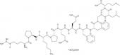 Substance P (trifluoro<wbr/>acetate salt)