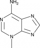 3-<wbr/>Methyladenine
