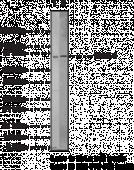 IRAK-<wbr/>1 Polyclonal Antibody