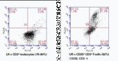 CD25 Monoclonal PE Antibody (Clone 143-<wbr/>13)