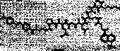 Dabcyl-GABA-<wbr/>PQGL-Glu<wbr/>(EDANS)-AK-<wbr/>NH<sub>2</sub>, (trifluoroacetate salt)