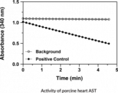 Aspartate Aminotransferase Colorimetric Activity Assay Kit