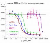 Human ROR? Reporter Assay System, 1 x 96-well format assay