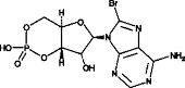 8-bromo-Cyclic AMP