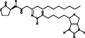 N-<wbr/>dodecanoyl-<wbr/>L-<wbr/>Homoserine lactone-<wbr/>3-<wbr/>hydrazone-<wbr/>biotin