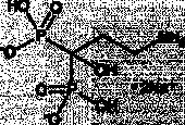 Pamidronate (sodium salt)