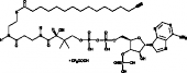 Palmitoyl Alkyne-<wbr/>Coenzyme A (trifluoro<wbr/>acetate salt)