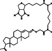 Progesterone 3-<wbr/>biotin
