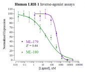Human LRH-1 Reporter Assay System, 3 x 32 assays in 96-well format